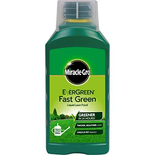 Miracle-Gro Fast Green Engrais Liquide concentré pour pelouse 100 m² Couverture Rapide Résultats en 24 Heures sans Danger pour Les Enfants et Les Animaux Vert extrême