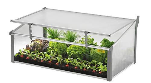 Juwel Komfort Doppel-Frühbeet Easy-Fix 100/60 (Pflanzenbeet aus wärmeisolierenden Hohlkammerplatten, Gewächshaus zur Aufzucht von Pflanzen, mit Fenster-Fixierung, Größe 100x60 cm) 20225