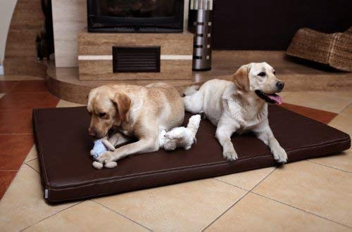 tierlando® Carlos Ortho-Medic Orthopädische Hundematte Kunstleder Visko Hundebett Matratze Größe: XXL - 150x100cm - CA6   Farbe: 01 braun