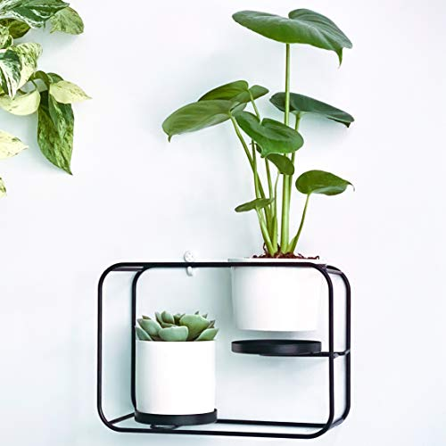 Wall Planters for Indoor Plants Modern Design Wall Plant Holder with 2 Ceramic Pots & 2 Wall Mounts Dual Purpose As A Wall Planter or Table Top Plant Stand - Black