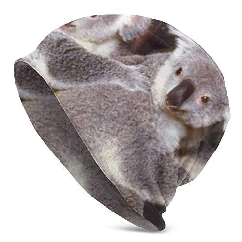 Gorro de punto para hombre, diseño de oso de Koala con madre y animales salvajes, para adultos, con gorro de punto fino y ligero
