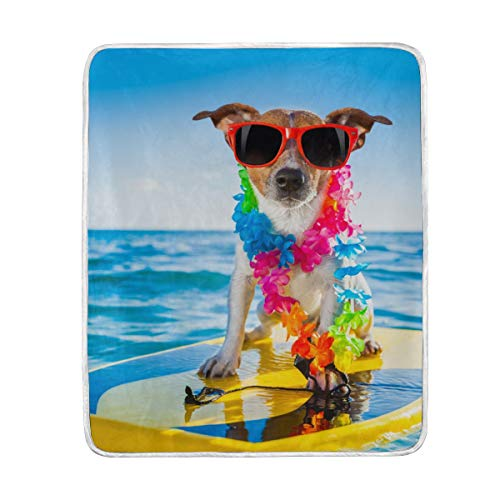 My Daily - Manta de microfibra de poliéster para perro surf, ligera, 127 x 152 cm