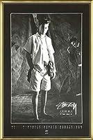 ポスター ステューシー ステューシー20th Anniversary プリント05 額装品 アルミ製ベーシックフレーム(ゴールド)