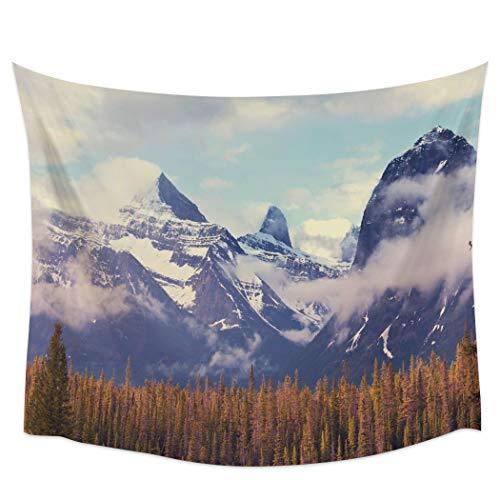 KHKJ Naturaleza Paisaje Decoración Tapiz Alpes en la Primavera con Hierba Fresca Cielo y majestuosas montañas Mago Art Decor Colgante de Pared A7 150x130cm