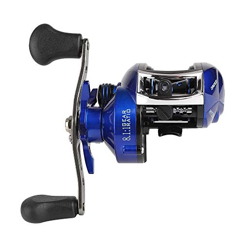 DAGEZI Best Baitcasting Reel for Saltwater 13 Shield Bearings 18Lb Drag Gear Ratio 8.1:1 Casting Reel Left and Right Hand Baitcaster Fishing Reel Ultra Smooth Powerful
