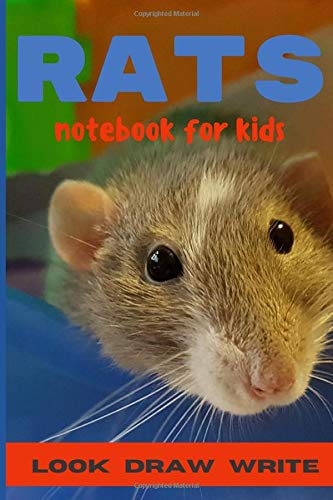 RATS - Notebook For Kids - LOOK DRAW WRITE: Mixed activity workbook for children ages 3-5 years. This activity book is used to promote both left and ... problem solving. (How Children Learn, Band 1)