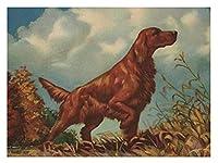 大人のための数字による新しいペイント子供アイリッシュセッター犬DIYキャンバス上の数字キットによるデジタル絵画-壁アートアートワーク風景