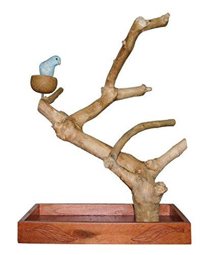Wagner\'s | Java Tree Tischfreisitz aus Kaffeeholz für Großsittiche & Papageien