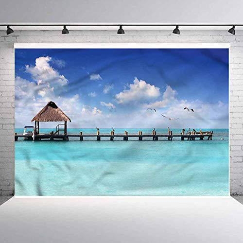 6x6FT Vinyl Backdrop Photographer,Tropical,Seascape Clouds Sky Birds Background for Baby Birthday Party Wedding Studio Props Photography