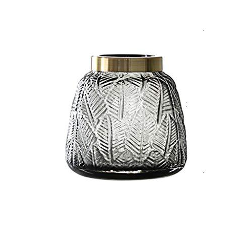 AFQHJ Hydroponic plant vaas, home decoratie glazen vaas, getint glas, vergulde fles mond, optionele grootte, grijze vaas