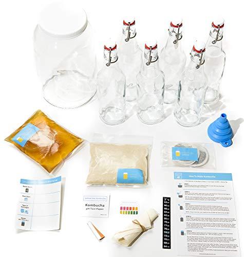 Joshua Tree Kombucha Deluxe Starter Kit - Contains Live SCOBY and Starter Tea, 1 Gallon Glass Fermentation Jar, Temp Gauge, Ph Strips, Easy Fermenting Instructions and 6 Glass Flip Top Bottles