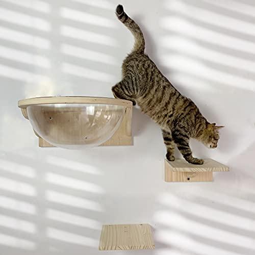 Felivecal - Capsula spaziosa in legno massiccio temprato di gatto / mobili per gatti moderni, letto per gatto da parete / albero tiragraffi da parete
