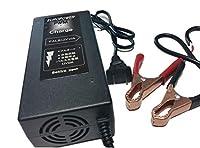 バッテリー充電器、パルス充電器10AEUROPOWER 鉛蓄電池充電器PWM「専門員サポート付」 パルス充電器再生