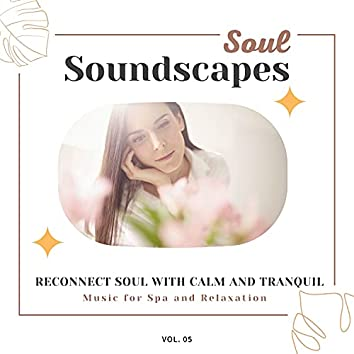 Soul Soundscapes, V05 - Reconnect Soul With Calm And Tranquil Music For Spa And Relaxation
