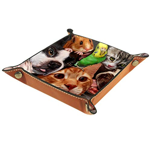 MUMIMI Women Girls Leather Square Dish Trinket Plate Jewelry Tray, Dogs Cats Budgie Rat Mothers Day Birthday Gift