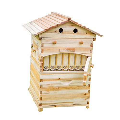 LANGLANG Automatic Wooden bee hive House kit with 7 PCS Upgraded Auto Frame Comb-Beehive Box Honey...