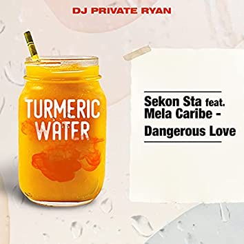 Dangerous Love (feat. Mela Caribe)