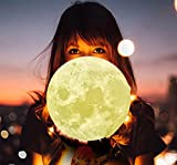 9.1 Inch Moon Lamp,3D Printing Moon Lamps,3D Printing LED 16 Colors Moon Light, Touch Control and Remote Control Decorative Moon Lamp Night Light (9.1in)