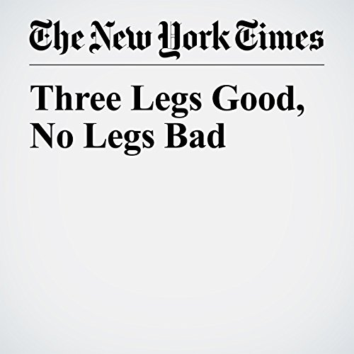 Three Legs Good, No Legs Bad copertina