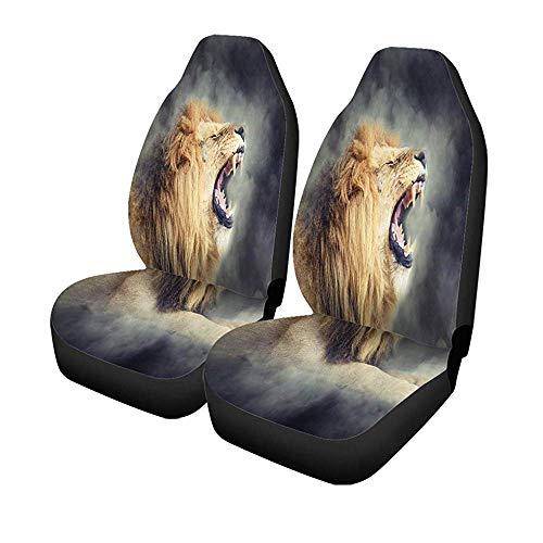 Beth-D 2Er-Set Autositzbezüge Roar Close Männlicher Löwe Im Rauch Auf Dunklem Tier Universal Auto Front Seats Protector 14-17IN