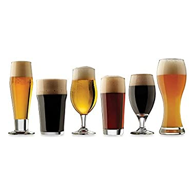 Dailyware™ Craft Brew Beer Tasting Glasses (Set of 6), Elegant Tasting Glass, Durable and Perfect for Cold Beverages
