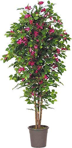 Buganville Künstlicher Baum mit Blumen und echtem Stamm, 200 cm hoch