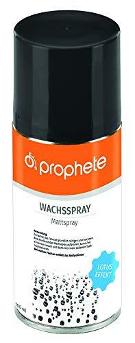 Prophete Wachsspray Pflegemittel, Mehrfarbig, L