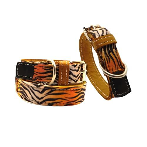 Collar para Mascota, Modelo Estampado Fabricado con Piel Muy Resistente y cómodo para su Mascota (Tigre, 55)