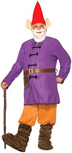 Forum Novelties Men's Garden Gnome Costume, Multi, Standard