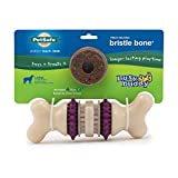 PetSafe Busy Buddy Bristle Bone Chew Toy for Dogs – Strong Chewers – Helps...
