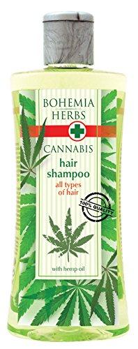 Cannabis Champú con aceite de cáñamo 250ml–Original Pure Na