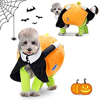 Nobleza-Costume de Chien Halloween avec Citrouille et Clown,Deguisement pour Chat réel,Vêtement pour Chien Drôle pour Cosplay,Convient aux Chiens Petite et Moyenne Taille (M)