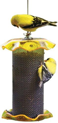 Birds Choice 1Qt. Forever Nigersamen, gelbe Farbe