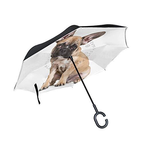 Orediy doppellagiger Regenschirm, niedliche Französische Bulldogge, Auto-Umgekehrter Regenschirm, groß, Anti-UV-Schutz, winddicht, Regen, Sonne, Reise-Regenschirm