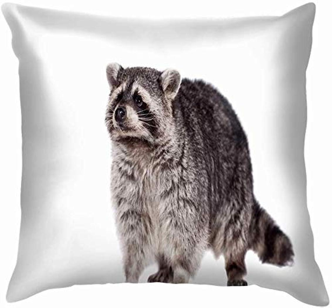 準備した寛解見えないアライグマ15歳のProcyon Lotor動物野生動物投げる枕カバーホームソファクッションカバー枕カバーギフト45x45 cm