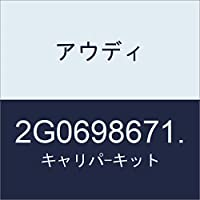アウディ キャリパ-キット 2G0698671.