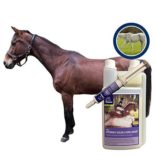 EMMA® Set Vitamin e Selen Lysin I Komplex Zusatzfutter Liquid I Vitamin Booster I Immunsystem I Muskulatur & Muskelaufbau I hochdosiert Oldie Sport Pferd Plus Aminosäure Booster 30 ml + 1 L