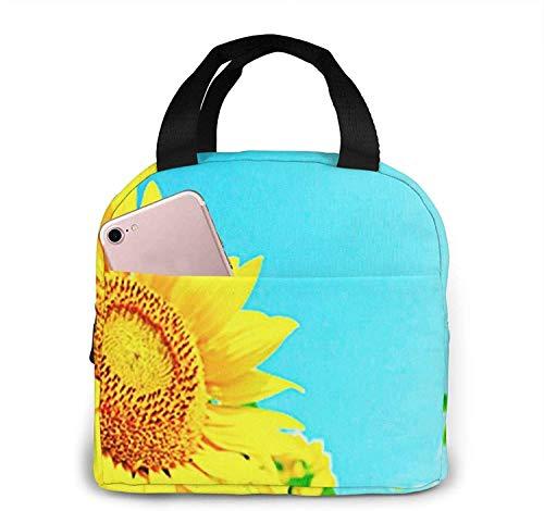 Bolsa de almuerzo con aislamiento Bolsa fresca para loncheras Tela impermeable Bolso de picnic plegable para mujeres Hombres adultos Niños Mapa antiguo Mundo-18