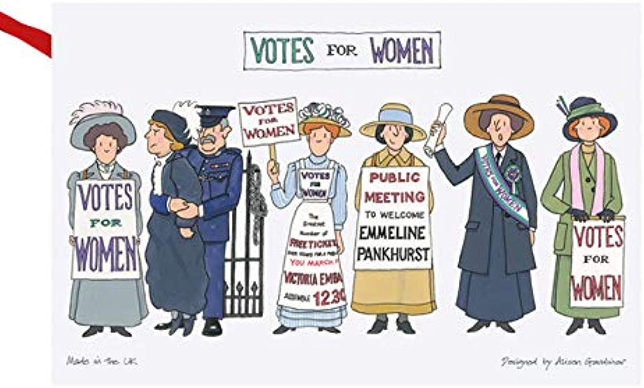Alison Gardiner Famous Illustrator Suffragette Votes For Women Vote 100 100 Cotton Tea Towel Dish Cloth Made In England Premium Quality And Detail
