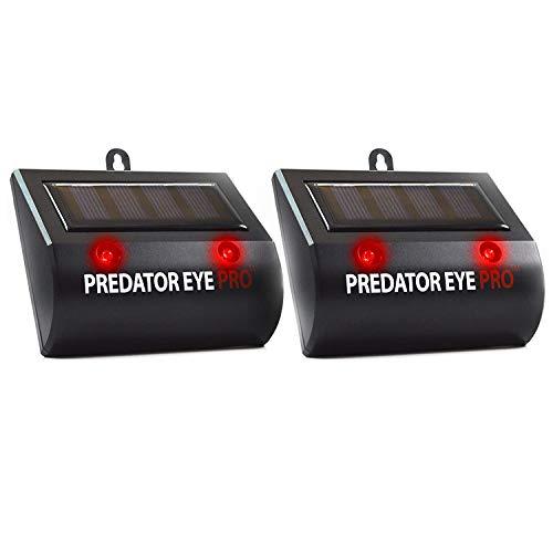 Repelente de animales ASPECTEK Predator Eye [2 unidades], con energía solar y dos luces rojas intermitentes, repelente impermeable para granja o jardín de gatos, perros, zorros, pájaros o mofetas