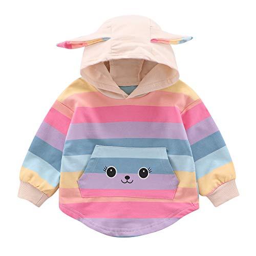 Baby Sweatshirt,Pwtchenty Langarm Pullover Winter Hoodie Pullover Kinder Mädchen Jungen Bunter Regenbogen Langarm Kapuzenoberteile Kapuzenpullover Herbstkleidung 0-4 Jahre