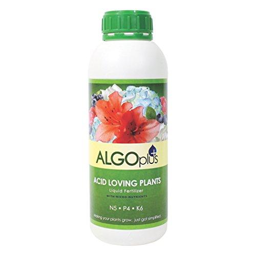 AlgoPlus Acid Loving Plant Formula