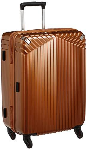 HIDEO WAKAMATSU スーツケース ジッパー インライト 61cm 85-7647