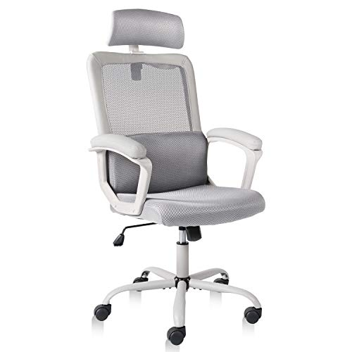 Smugdesk Office Chair, High Back Ergonomic Mesh Desk Office...