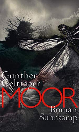 Moor (suhrkamp taschenbuch)