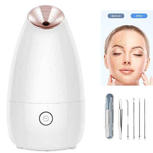BEIAKE Gesichtsdampfer, Startseite Ion Nano Feuchtigkeits-Spray Instrument Gesichtsdampfmaschine Thermal Spray Luftbefeuchter Hautpflege Gesichtspflege Pore-Reinigungsmittel