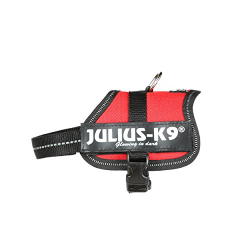 Julius K9 Powerharness, Tamaño Baby 2, Colore rojo