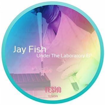 Under The Laboratory EP