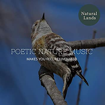 Poetic Nature Music - Makes You Feel Rejuvenated