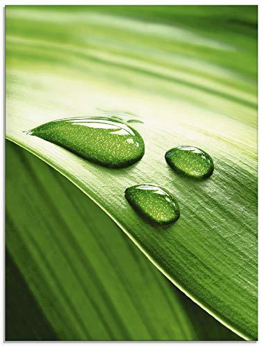 Artland Glasbilder Wandbild Glas Bild einteilig 45x60 cm Hochformat Natur Pflanzen Blätter Wassertropfen Zen S6RI